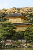 golden pav3 kyoto cn