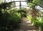 bardini gardens2