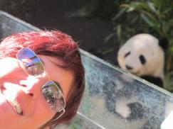 me and panda